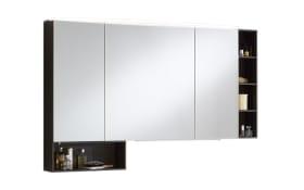 Spiegelschrank 3040 in Robinie dunkel Nachbildung