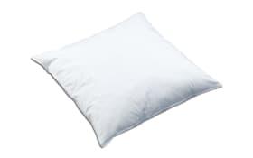 Kissen Texas in weiß, 40 x 40 cm