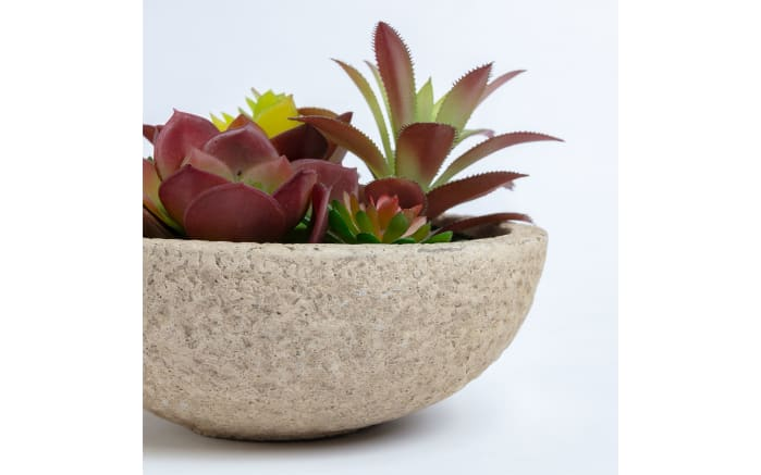Pflanze Artificial mixed succulent, 16 x 13 x 16 cm