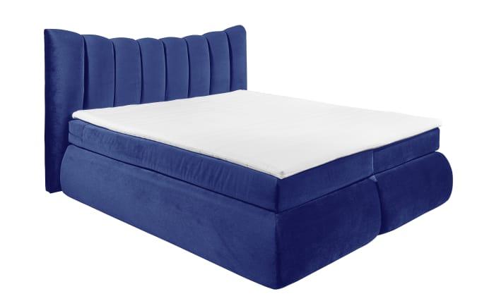 Boxspringbett Seward in blau
