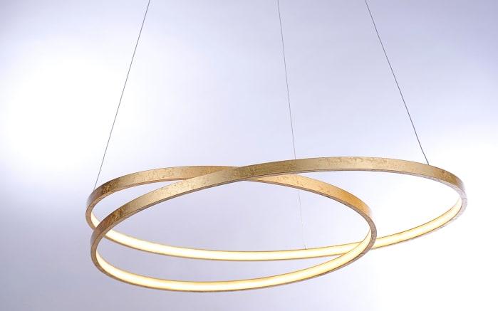 led pendelleuchte roman in goldfarbig online bei hardeck kaufen. Black Bedroom Furniture Sets. Home Design Ideas