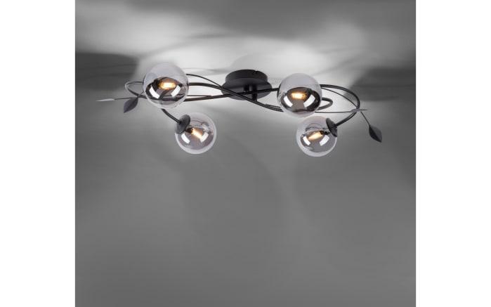 LED-Deckenleuchte Widow in schwarz, 4-flammig