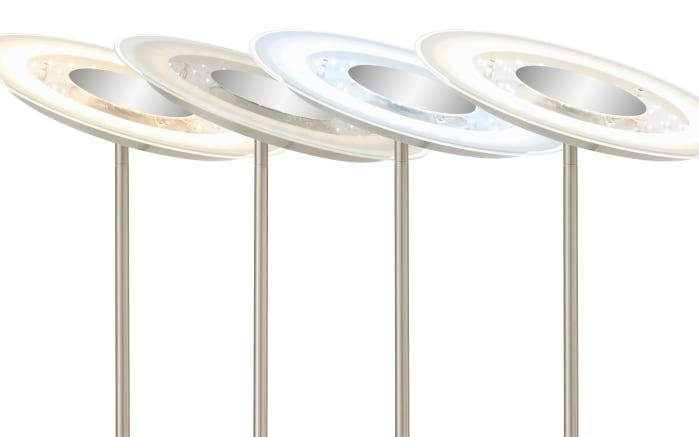 LED-Standfluter 1340022 in nickel matt, 180 cm