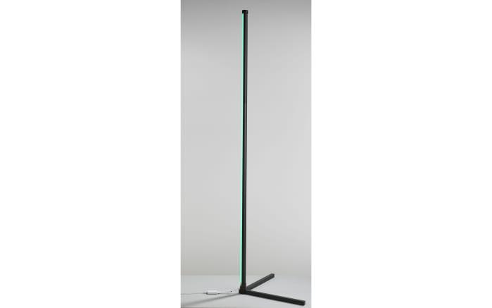 LED-Standleuchte Polly in schwarz, 156 cm-05