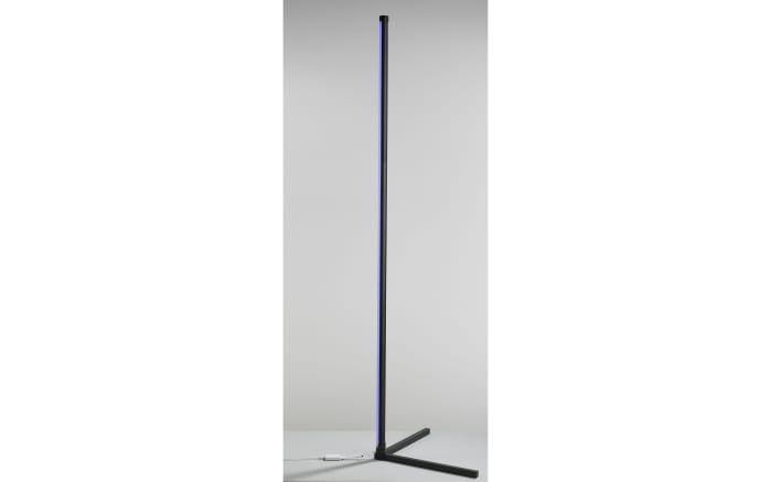 LED-Standleuchte Polly in schwarz, 156 cm-06