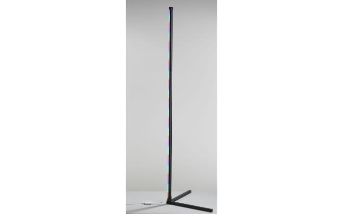 LED-Standleuchte Polly in schwarz, 156 cm-11