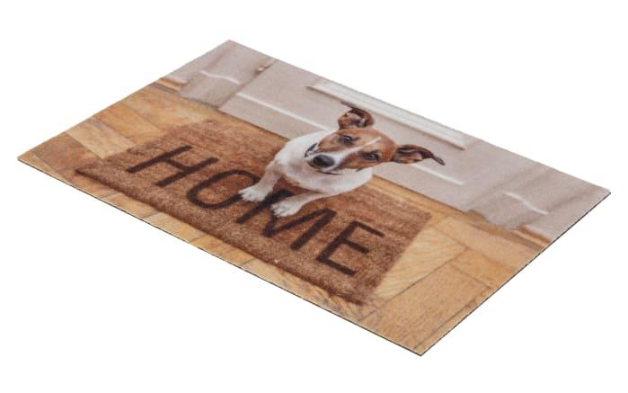 Türmatte mit Hunde-Motive, 40 x 60 cm
