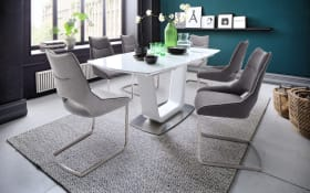 Stuhlgruppe Aldrina/Xander in grau/weiß