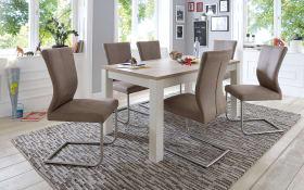 Stuhlgruppe 8631/1673 in braun/weiß