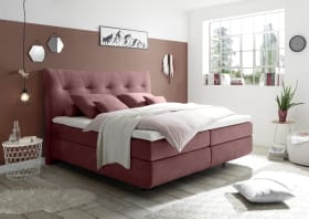 Boxspringbett Waterford 2 in berry