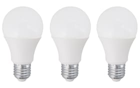 LED-Leuchtmittel AGL 10269 10W / E27 / 1055 Lumen, 3er-Set