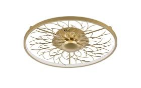 LED-Deckenleuchte Diego in gold-optik