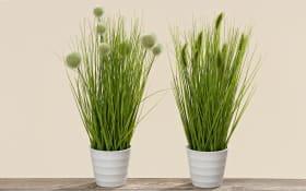 Pflanze im Topf in grün, 44 cm