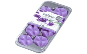 Aromatic Wax Melts in Lavendel, 8er-Set