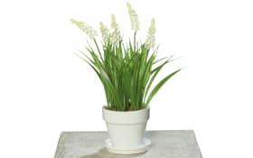 Blumentopf in creme mit Muscari-Kunstpflanze