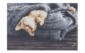 Türmatte mit Katzen-Motiv, 40 x 60 cm