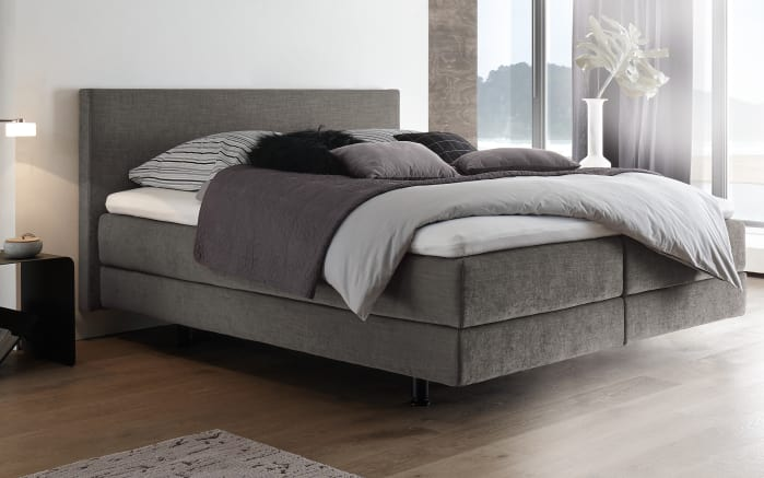 boxspringbett in grau online bei hardeck kaufen. Black Bedroom Furniture Sets. Home Design Ideas