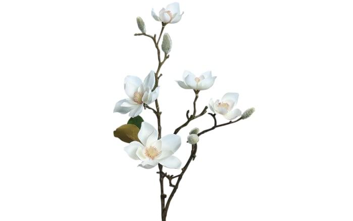 Magnolie mit 5 Blüten in cream, 64 cm